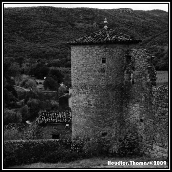 http://bildibrun.cowblog.fr/images/photographiesdesthemes/5Thomas-copie-4.jpg